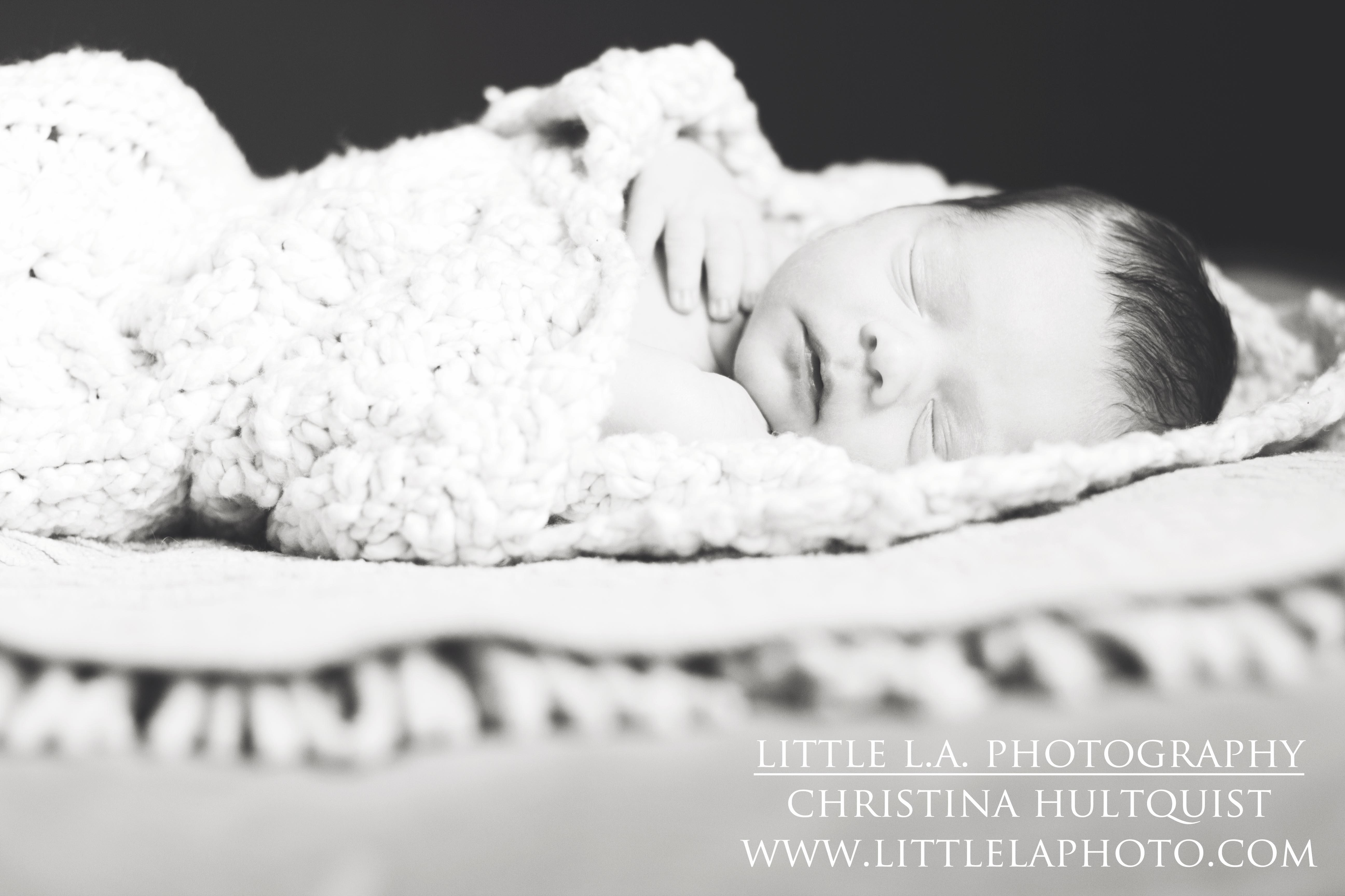 la newborn photographer