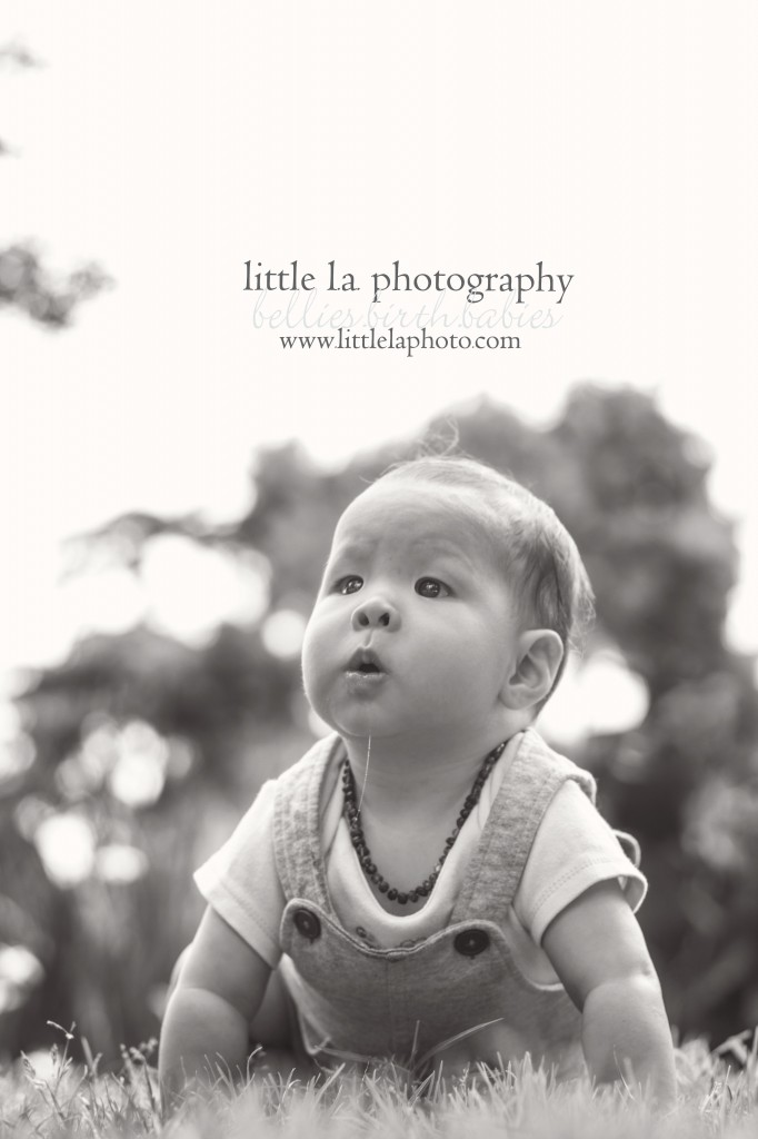 sweet baby photography in los angeles santa monica
