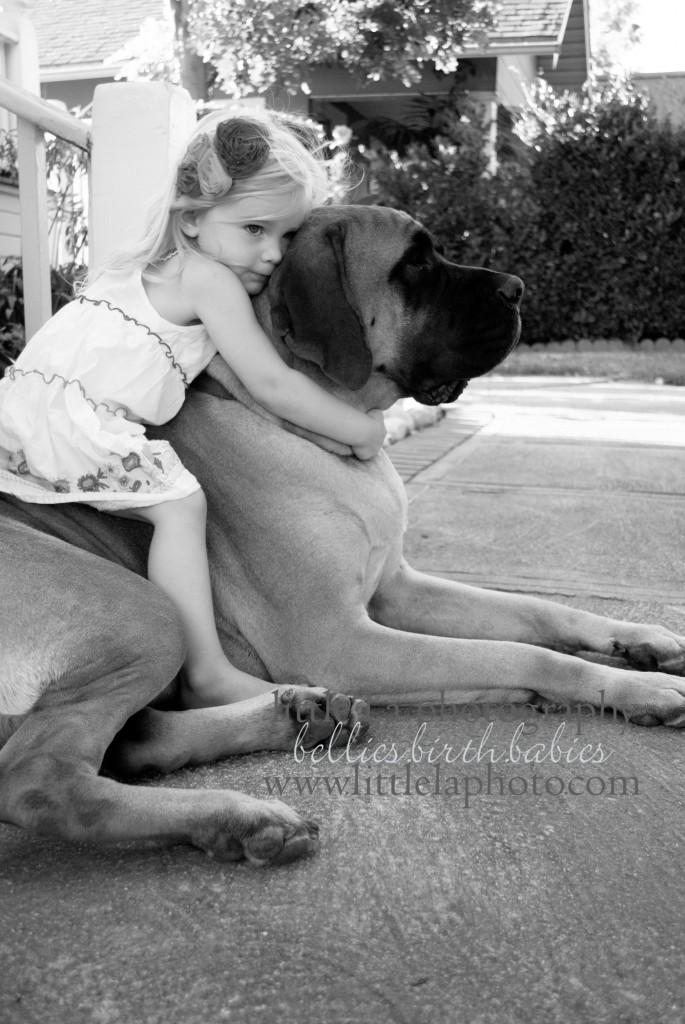 dog in family photos