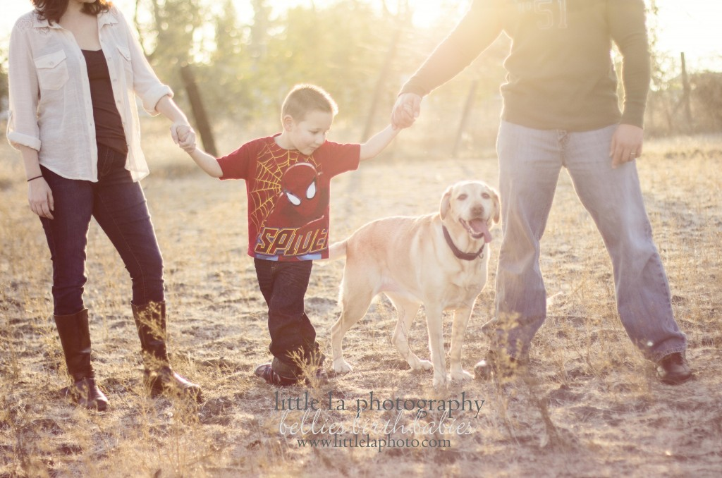 beautiful family photography ideas
