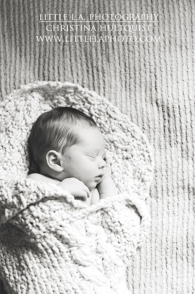 la newborn photos