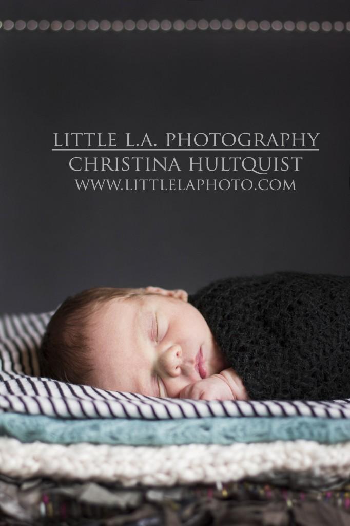 newborn photographer los angeles