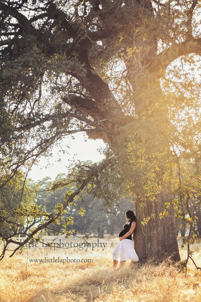 Los angeles maternity photographer in roseville