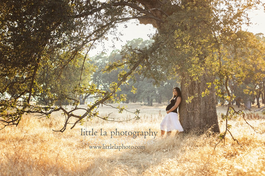 maternity photography outdoor la roseville ca