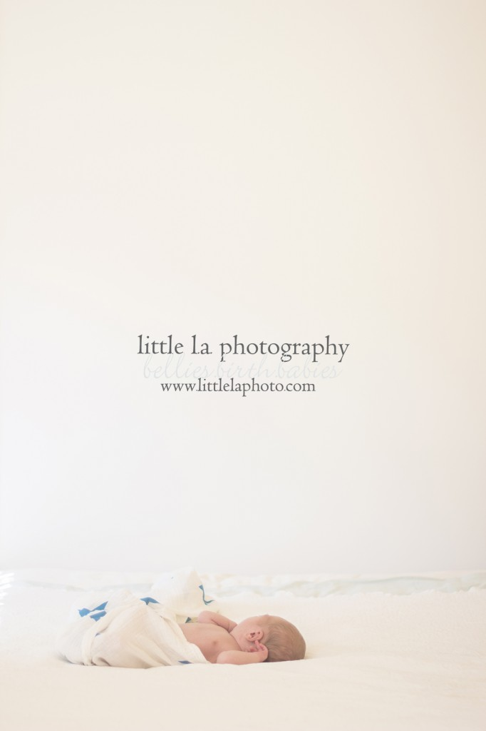 fresh new baby photography los angeles ca