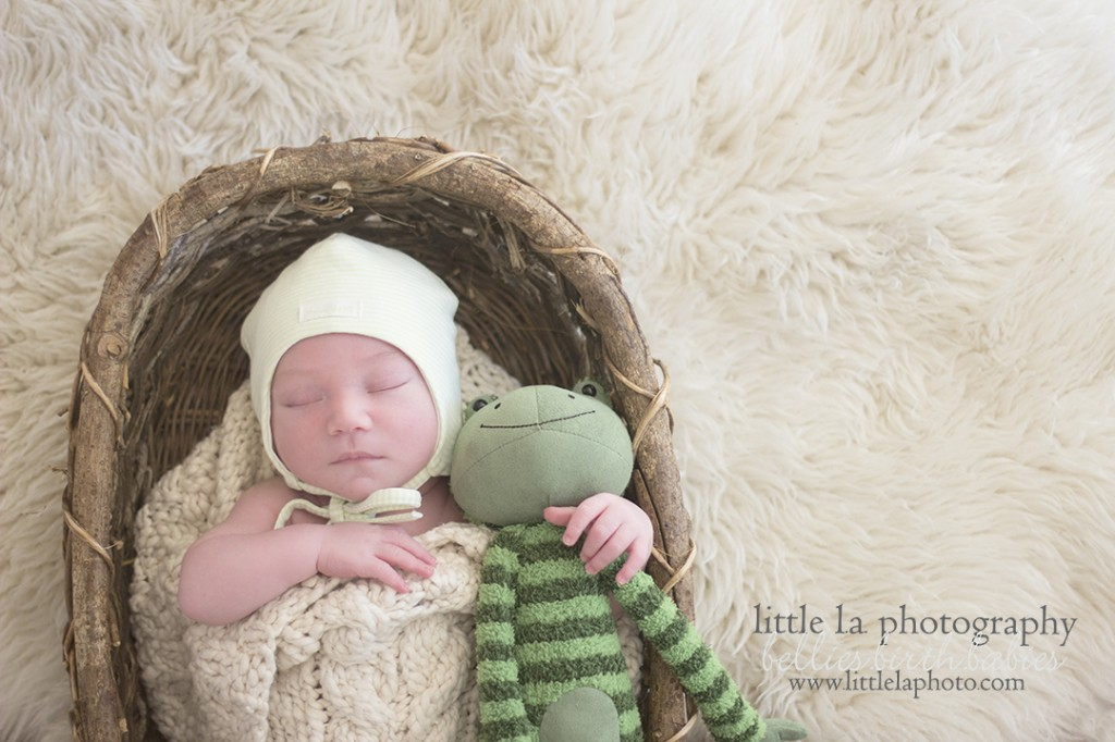 froggy newborn photos la los angeles