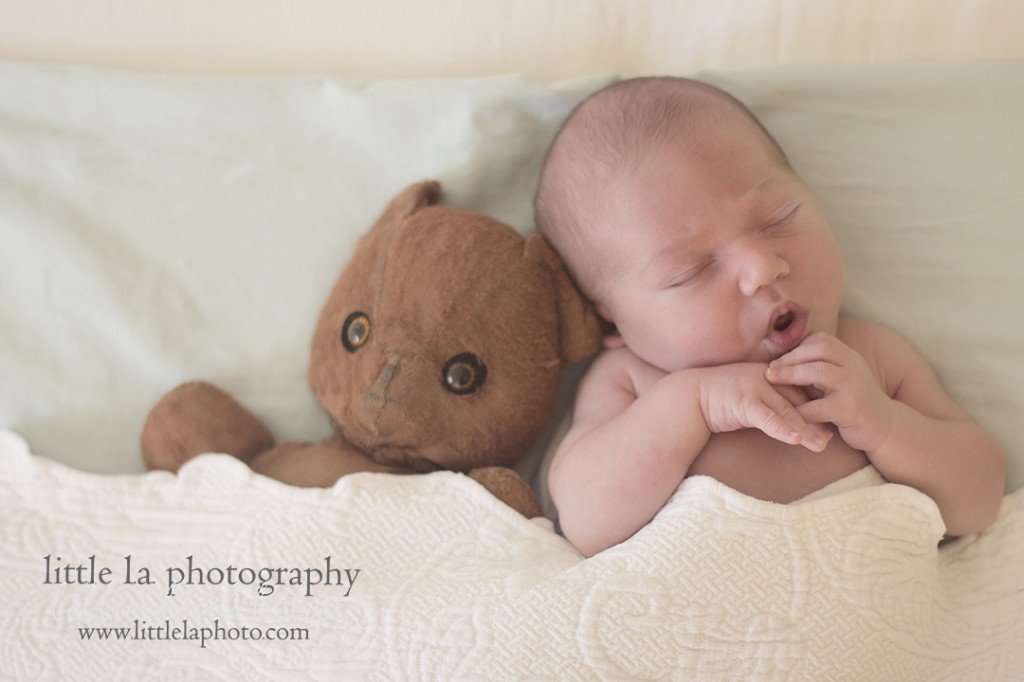 la newborn photographer