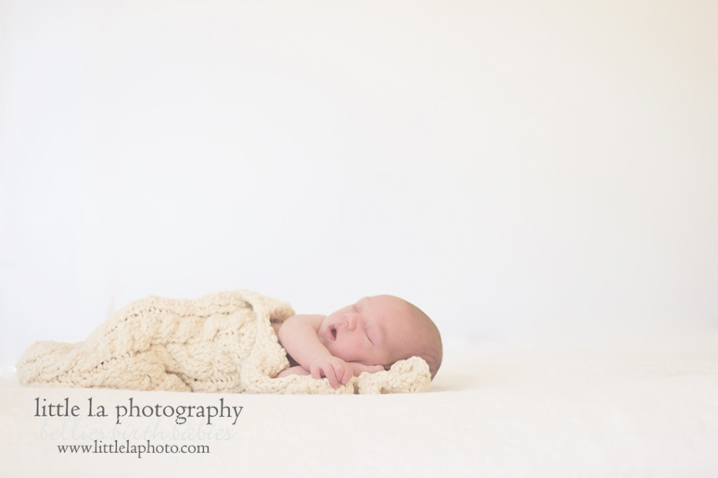 tiny baby la newborn photos