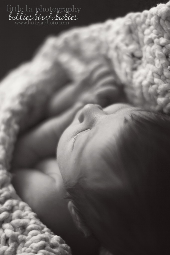la newborn baby photographer
