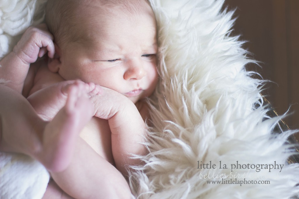 newborn photographer in Los Angeles