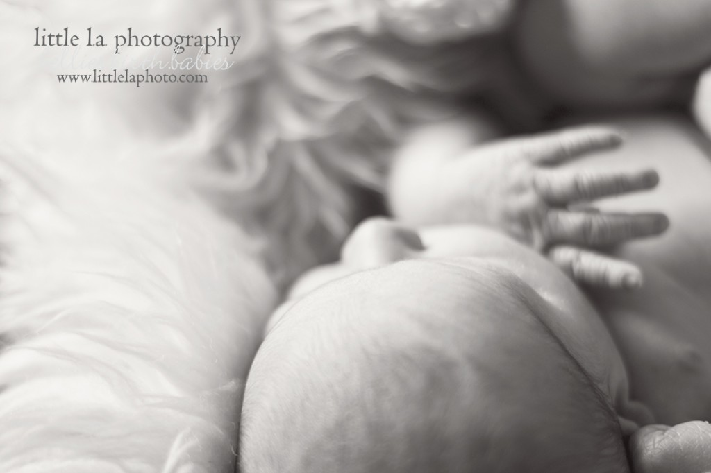 precious newborn LA photography