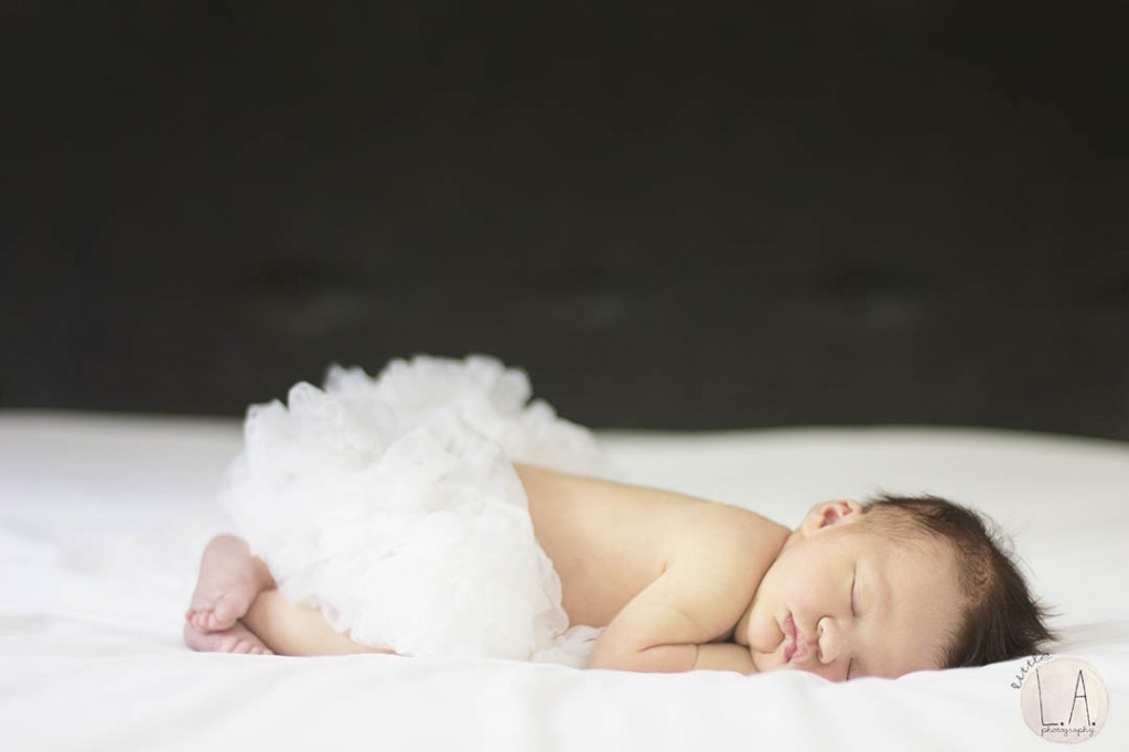 la silverlake newborn photographer