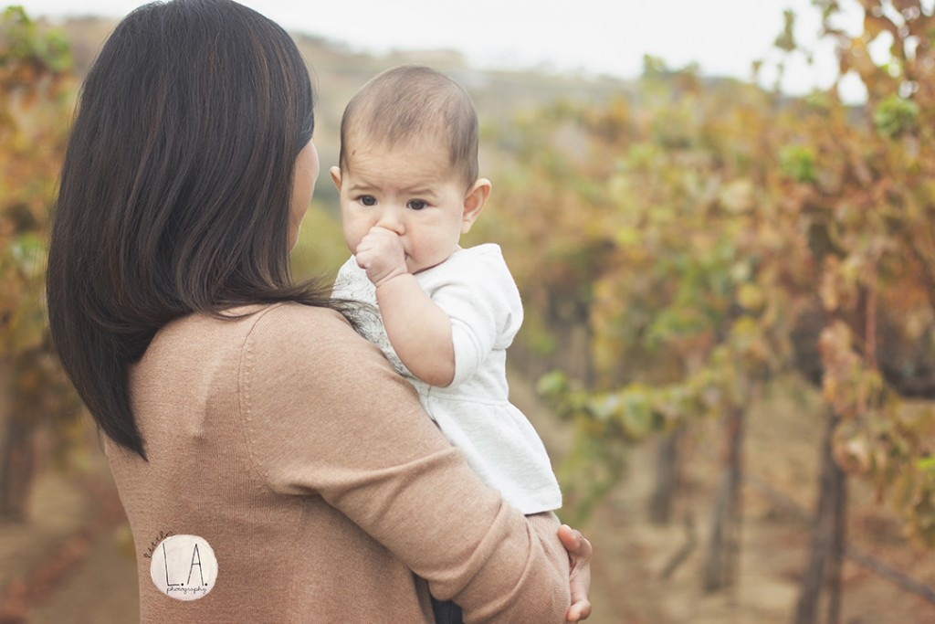 family photos in vineyards