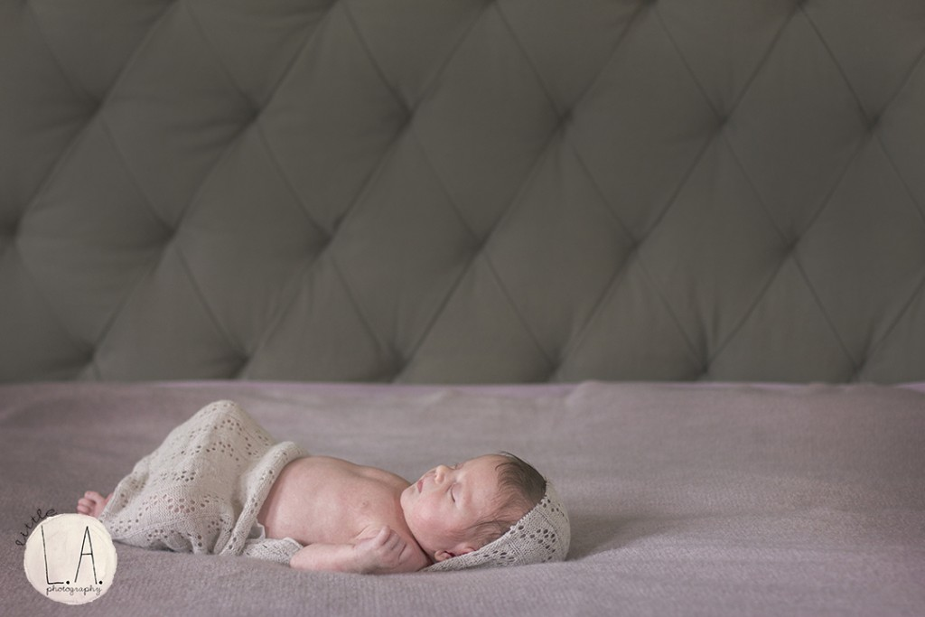 hollywood newborn photographer