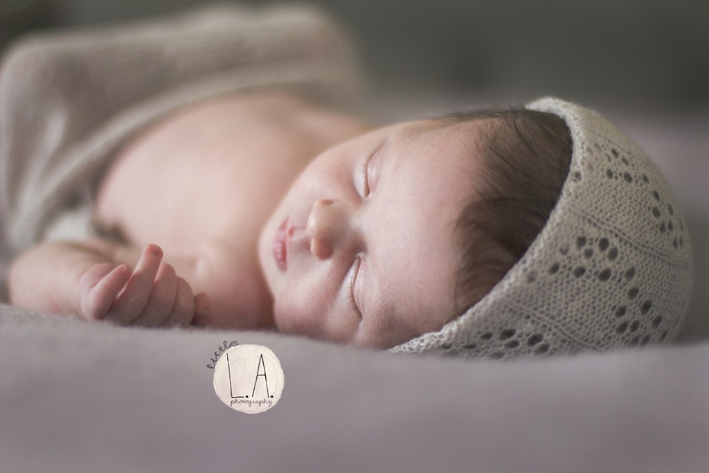 soft natrual newborn photography la hollywood