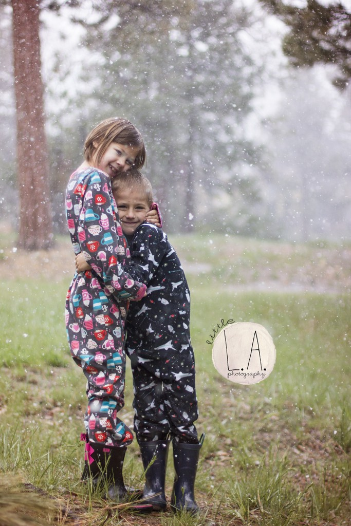 big bear family photography
