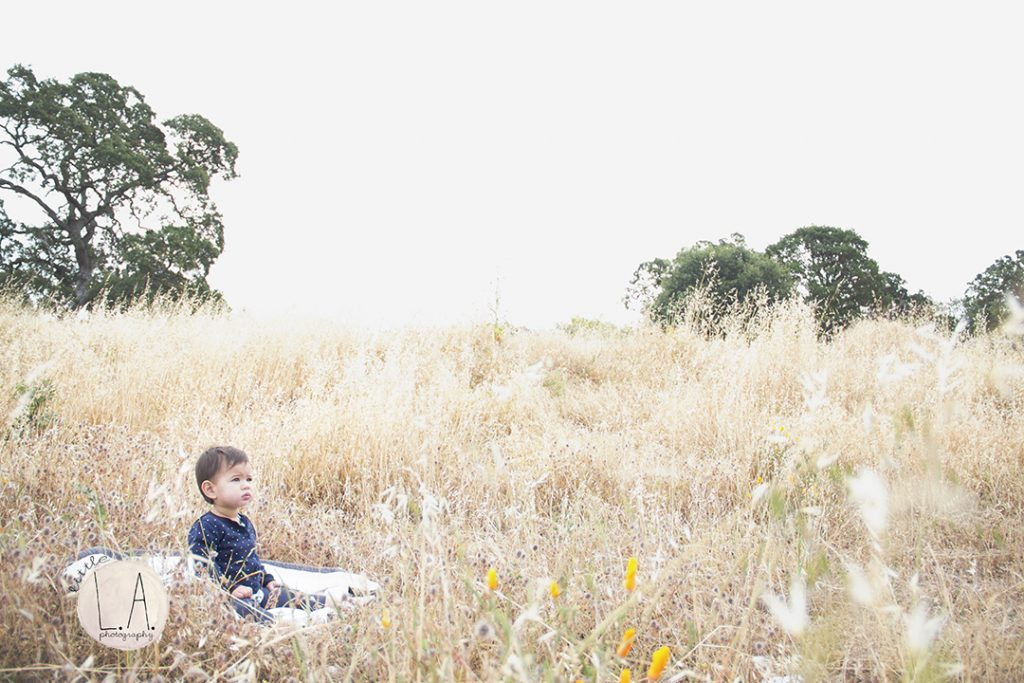 sf baby photography