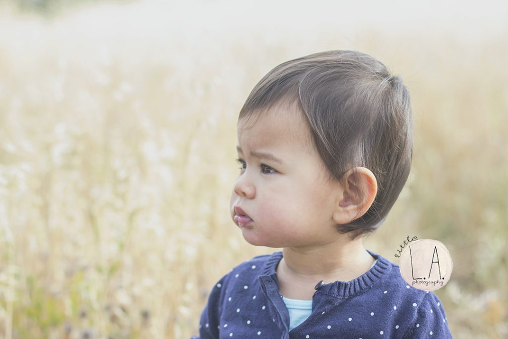 vacaville family photographer travel photography